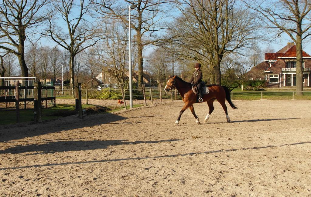 slider5_manege_paarden